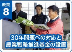 30年問題への対応と農業戦略推進基金の設置